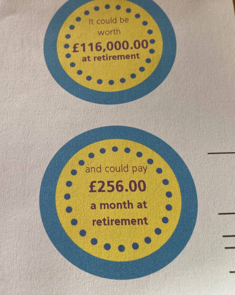 Screenshot of my pension summary, which says I'll receive £256 a month.